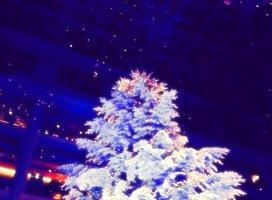 クリスマスキャロル|双葉 みかさんの日誌写真