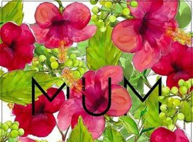 母の日に H I T O M Iさんの日誌写真