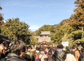 初詣に行きました♪|◆ひとみん◇さんの日誌写真