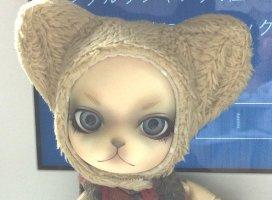 うちの子紹介♪|武井ゆきのさんの日誌写真