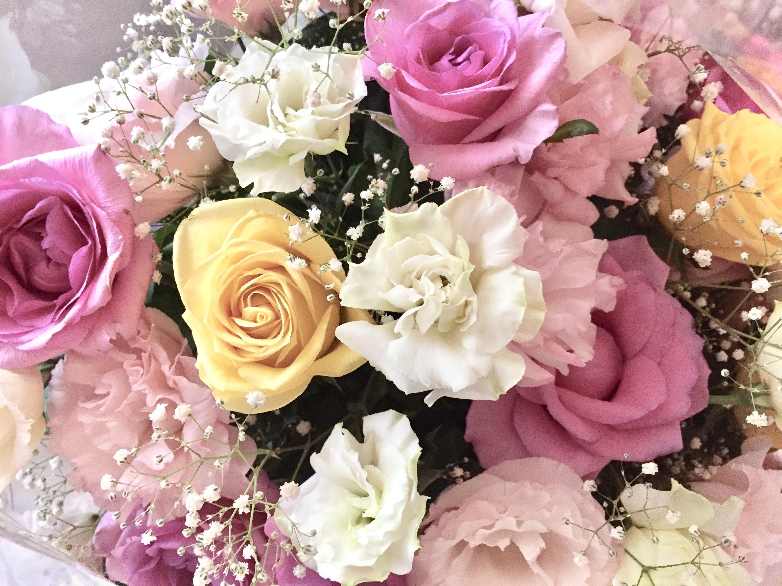 人妻さん日誌:お花が届きました^^