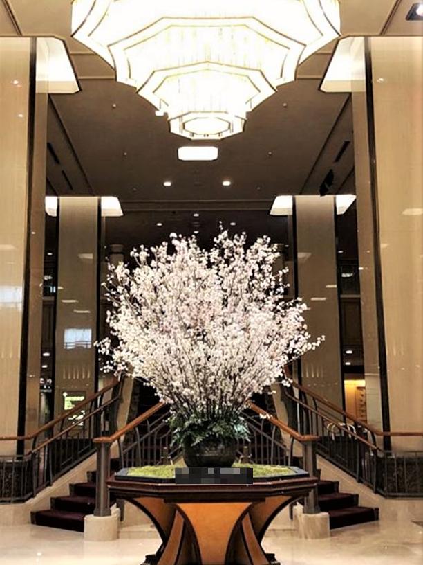 人妻さん日誌:〜大好きな桜の季節〜