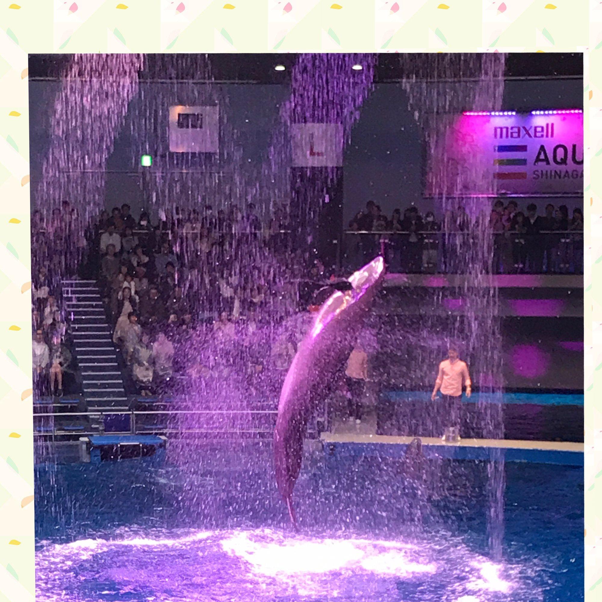 人妻さん日誌:初めて品川水族館に行