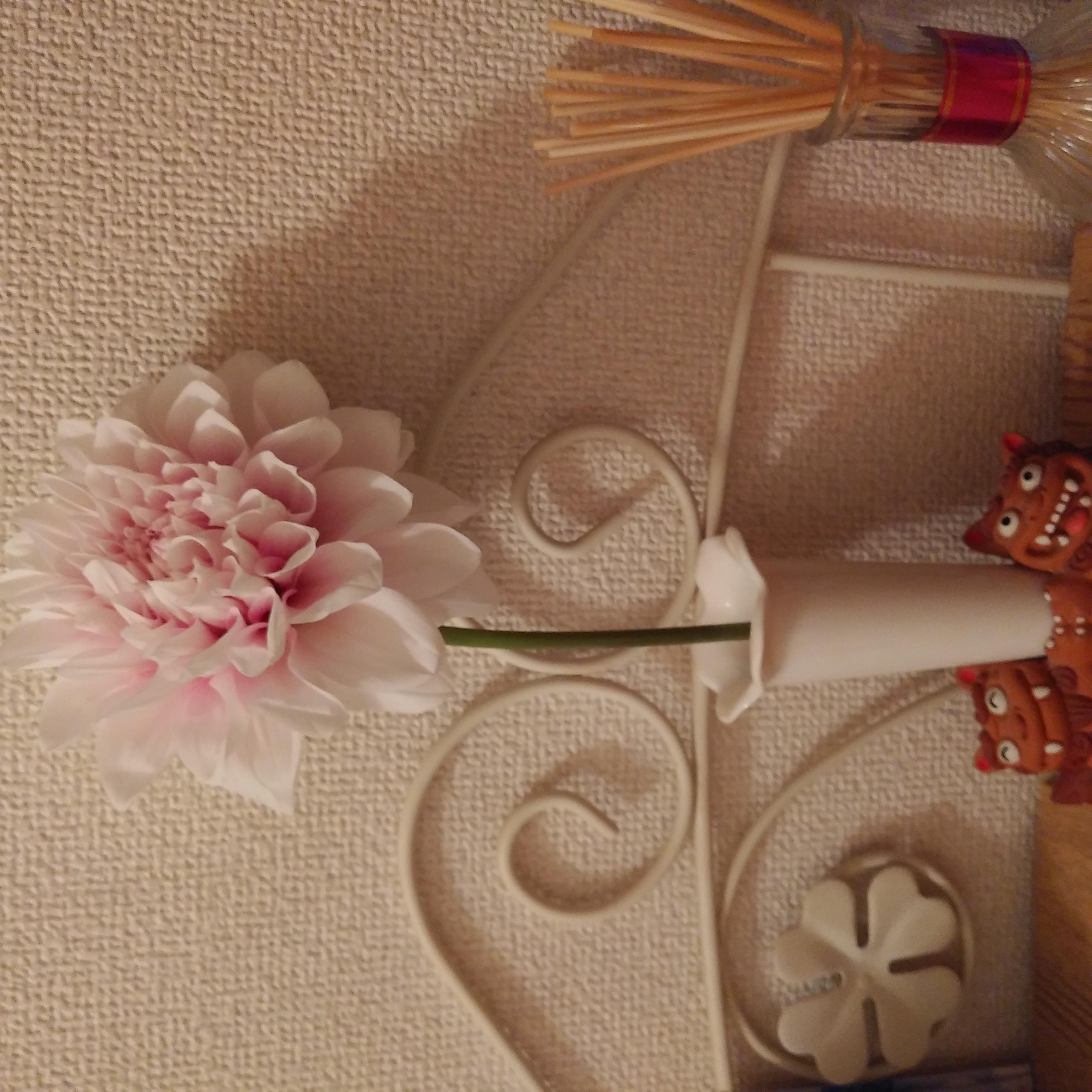 人妻さん日誌:お買い物の帰り、お花